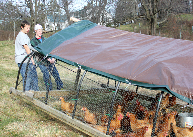 Strom Chamberland and Tyson Havard move the chicken pen.